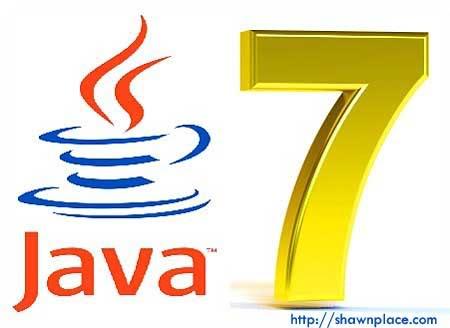 Java SE 7 Picture