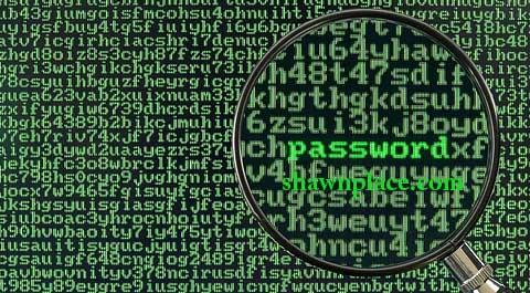 Password 20 Most Common